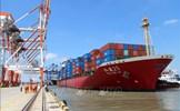 Kết luận của Thủ tướng Chính phủ về Quy hoạch mạng lưới đường bộ và Quy hoạch tổng thể hệ thống cảng biển Việt Nam