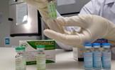 Những quốc gia Đông Nam Á nào đang tự phát triển vaccine COVID-19?