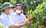 Xây dựng nền nông nghiệp có trách nhiệm