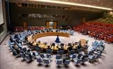 Việt Nam nhấn mạnh việc cần tôn trọng và thực thi Công ước Cấm vũ khí hóa học