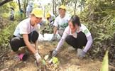 Sun Group tiếp tục giữ vững danh hiệu Nơi làm việc tốt nhất châu Á
