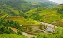 Việt Nam thuộc top những quốc gia đẹp nhất thế giới