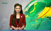 Bản tin Truyền hình Mặt trận số 31