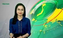 Bản tin Truyền hình Mặt trận số 44