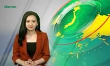 Bản tin Truyền hình Mặt trận số 55