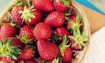 Lợi ích không nhỏ trong các loại rau màu đỏ