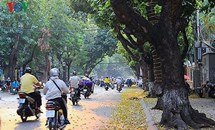 Bắc Bộ đón nắng đẹp, Nam Bộ có mưa dông
