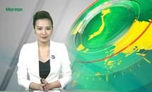 Bản tin Truyền hình Mặt trận số 71