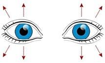 9 bài tập cho mắt giúp tăng cường thị lực