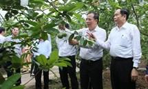 Xây dựng giai cấp nông dân theo Nghị quyết 26 - NQ/TW