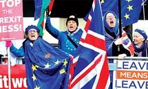 Trái đắng Brexit