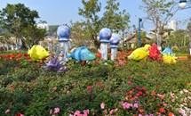Lễ hội hoa xuân Sun World Halong Complex - Nét văn hóa duyên dáng từ miền biển