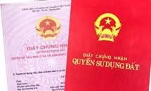TP. HCM tiếp tục đề nghị Chủ tịch quận Bình Tân giải quyết việc chậm trễ cấp sổ đỏ cho người dân