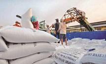Bộ Tài chính: Doanh nghiệp trúng thầu mua gạo dự trữ nhưng không ký hợp đồng