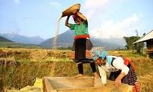 Đào tạo nguồn nhân lực, góp phần phát triển bền vững vùng dân tộc thiểu số và miền núi hiện nay