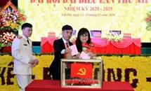 Tiếp tục đổi mới công tác tổ chức xây dựng Đảng, chuẩn bị và tổ chức thật tốt đại hội đảng bộ các cấp, tiến tới Đại hội XIII của Đảng