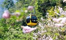 Sun World Ba Na Hills giảm 60% giá vé cáp treo cho du khách miền Trung - Tây Nguyên