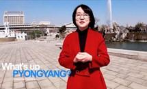 Triều Tiên đẩy mạnh quảng bá hình ảnh qua mạng xã hội