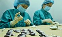 Việt Nam sẽ thử nghiệm giai đoạn 1 vắc xin COVID-19 trên những người tự nguyện hoàn toàn