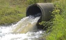 Xử phạt gần 2,5 tỷ đồng đối với 8 doanh nghiệp vi phạm quy định bảo vệ môi trường