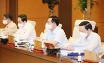 UBTV Quốc hội cho ý kiến về báo cáo và kế hoạch công tác của Kiểm toán Nhà nước