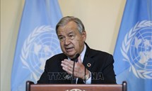 Tổng thư ký LHQ kêu gọi thế giới đánh giá lại vai trò của lương thực