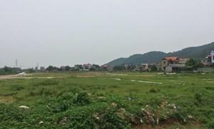 Đất nông nghiệp bị chia lô, bán nền: Bài học kinh nghiệm trong công tác dồn điền - đổi thửa tại Bắc Giang
