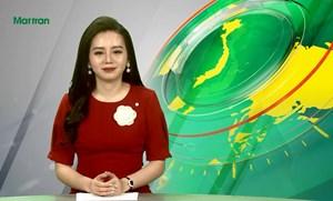 Bản tin Truyền hình Mặt trận số 123