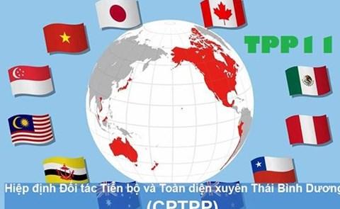 Công bố văn bản Hiệp định CPTPP, dự kiến ký kết chính thức vào 8/3