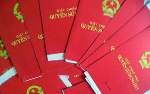 Văn phòng Chính phủ đề nghị UBND TP Hồ Chí Minh giải quyết vụ sổ đỏ tại quận Bình Tân