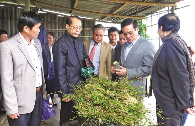 Nâng cao chất lượng giám sát của Mặt trận đối với Chương trình mục tiêu Quốc gia xây dựng nông thôn mới